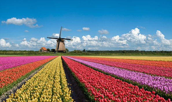 Private tours of Belgium & the Netherlands